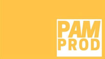 PAMPROD_TPSH_PRODWAYS_IREPA_INS JEAN LAMOUR_ESTIA_APERAM_LINKEDIN